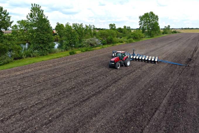 agronegócio plantação